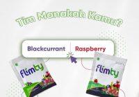 Flimty Rasa Blackcurrant atau Raspberry